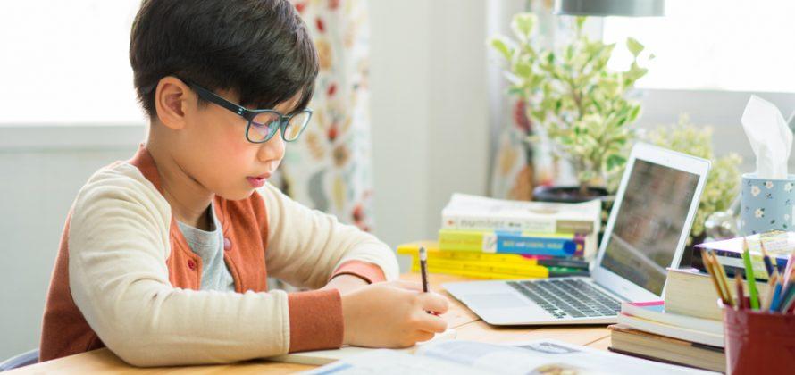 Junho púrpura: distúrbios de aprendizagem escolar